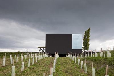 forum_16_10_ORTE_warnt – Weingut Loimer, Langenlois. Architektur: Andreas Burghardt. Foto: Andreas Burghardt